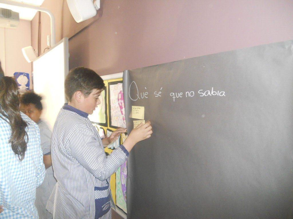 AE05 Escoles-Ripoll 12br